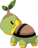 387Turtwig DP anime 3