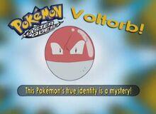 Voltorb- Who's That Pokémon