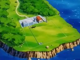 등자나무섬