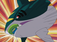 Sharpedo AG019 Bite