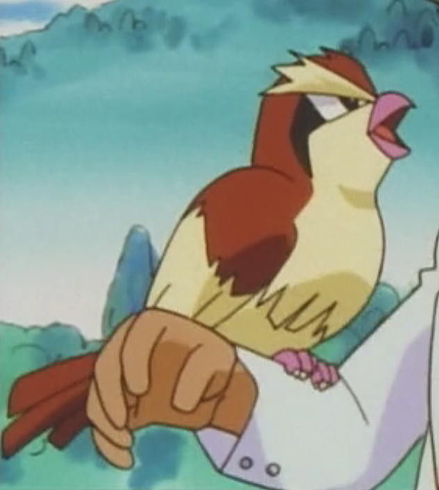 Professor Oak Pidgey