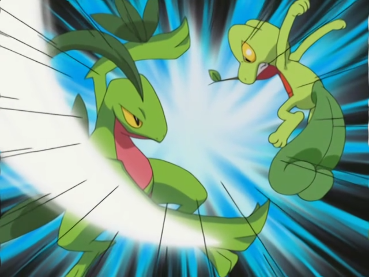 Leaf Blade | Pokémon Wiki | FANDOM powered by Wikia