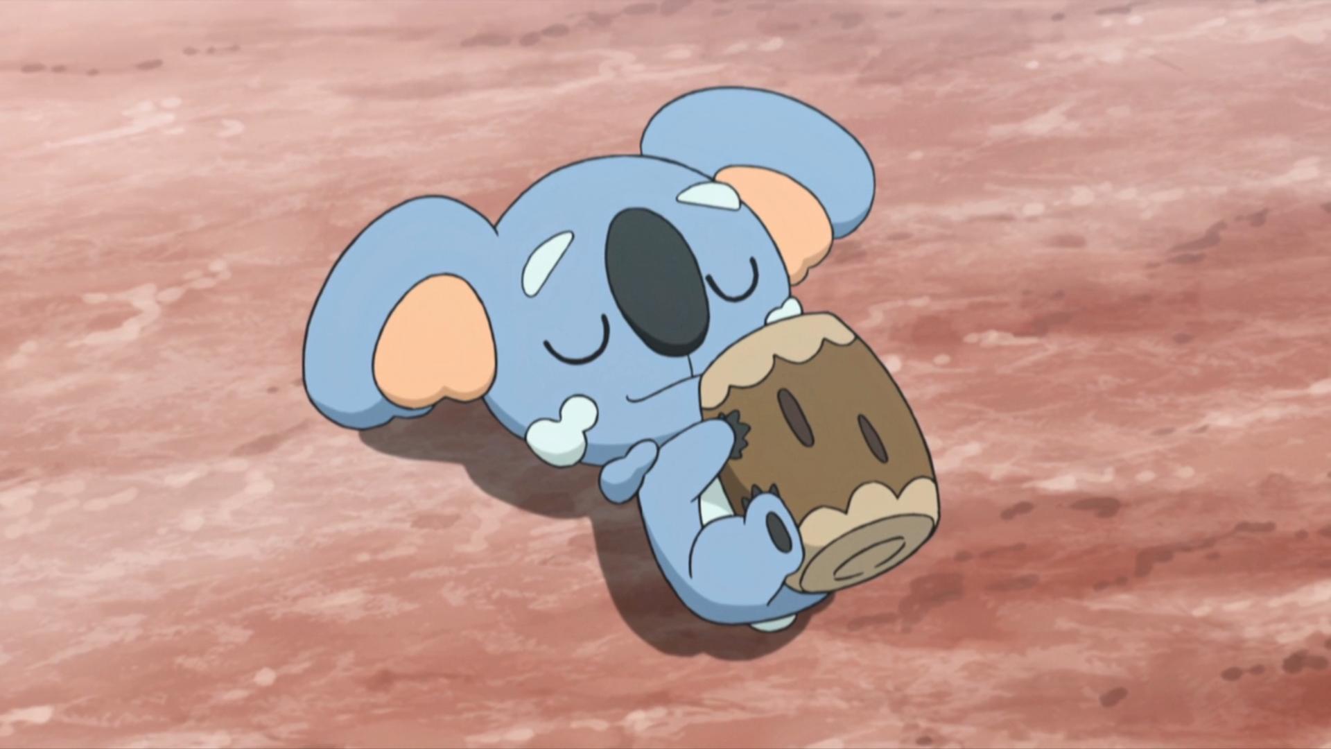 Samson Oak's Komala | Pokémon Wiki | FANDOM powered by Wikia Xerneas Yveltal Zygarde Wallpaper
