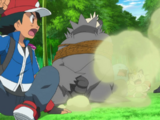 XY011: The Bamboozling Forest!