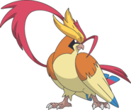 018Pidgeot-Mega XY anime