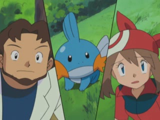 File:Professor Birch Mudkip.png