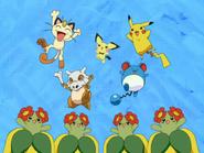 Spannende Pokémon Relay