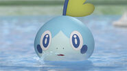Sobble trailer main