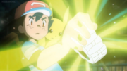Ash Receiving Z-Ring