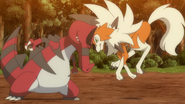 Ash Lycanroc Tackle