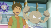 Brock and Geodude