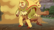 Clemont Dream Chesnaught