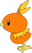 255Torchic AG anime 5