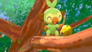 Pokemon Sword & Shield Grookey in Game 2