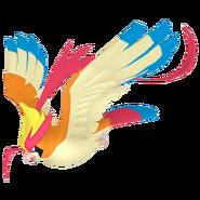 018Pidgeot Mega Pokémon HOME
