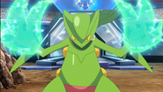 Sawyer Sceptile Dragon Claw