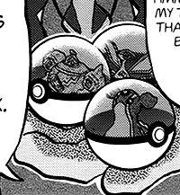 Hapu's Pokémon