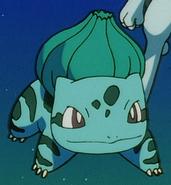 First Bulbasaurtwo
