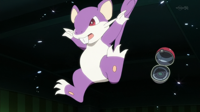 File:Red Rattata PO.png