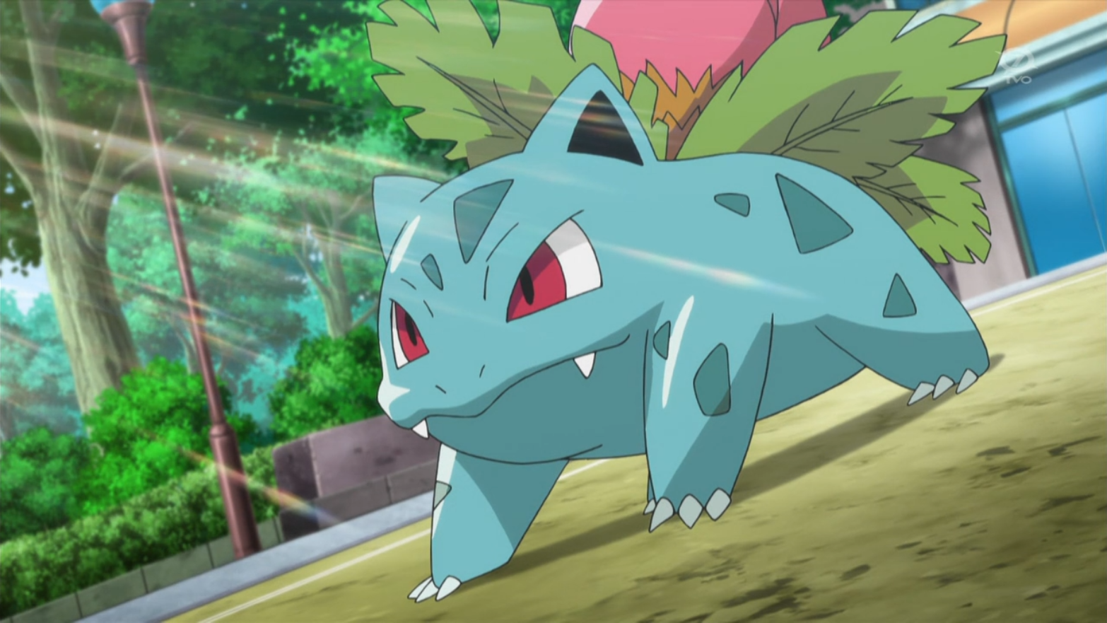 Shauna S Ivysaur Pok 233 Mon Wiki Fandom Powered By Wikia