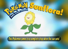 Sunflora - Who's That Pokémon