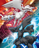 Reshiram Zekrom artwork