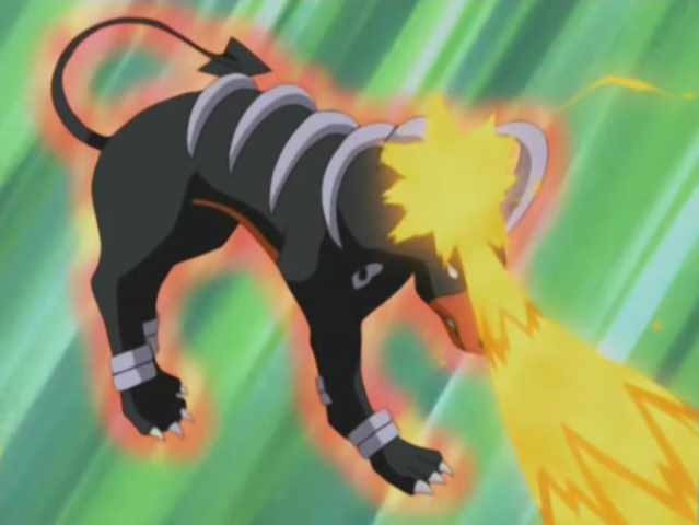 File:Harrison Houndoom Counter.png
