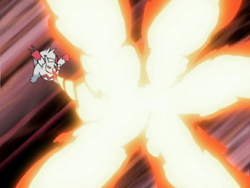 Black Belt Zangoose Fire Blast