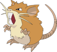 020Raticate AG anime