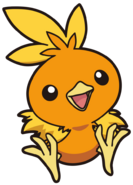 255Torchic AG anime 8