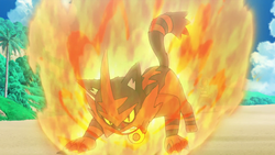 Ash Torracat Flame Charge