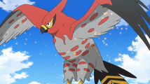 Ash's Talonflame