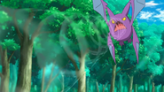 Brock Crobat Supersonic