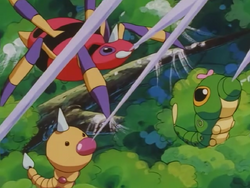 Caterpie Weedle String Shot