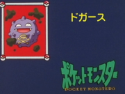 Japanese It's Koffing