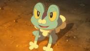 Ash Dream Froakie