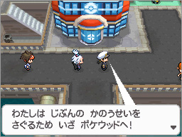 File:BW2 Pokewood 2.png