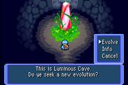 Squirtle in Luminous Cave