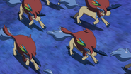 Keldeo Resolute Form Double Team