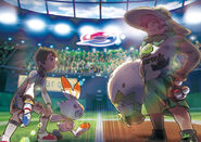 Pokémon sword & shield gym artwork
