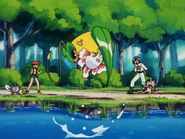 Misty Goldeen Fury Attack