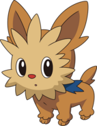 506Lillipup BW anime