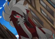 Gladion Lycanroc