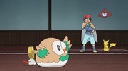 Ash Meltan & Rowlet in Battle