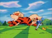 Wordt een Pokémon Meester
