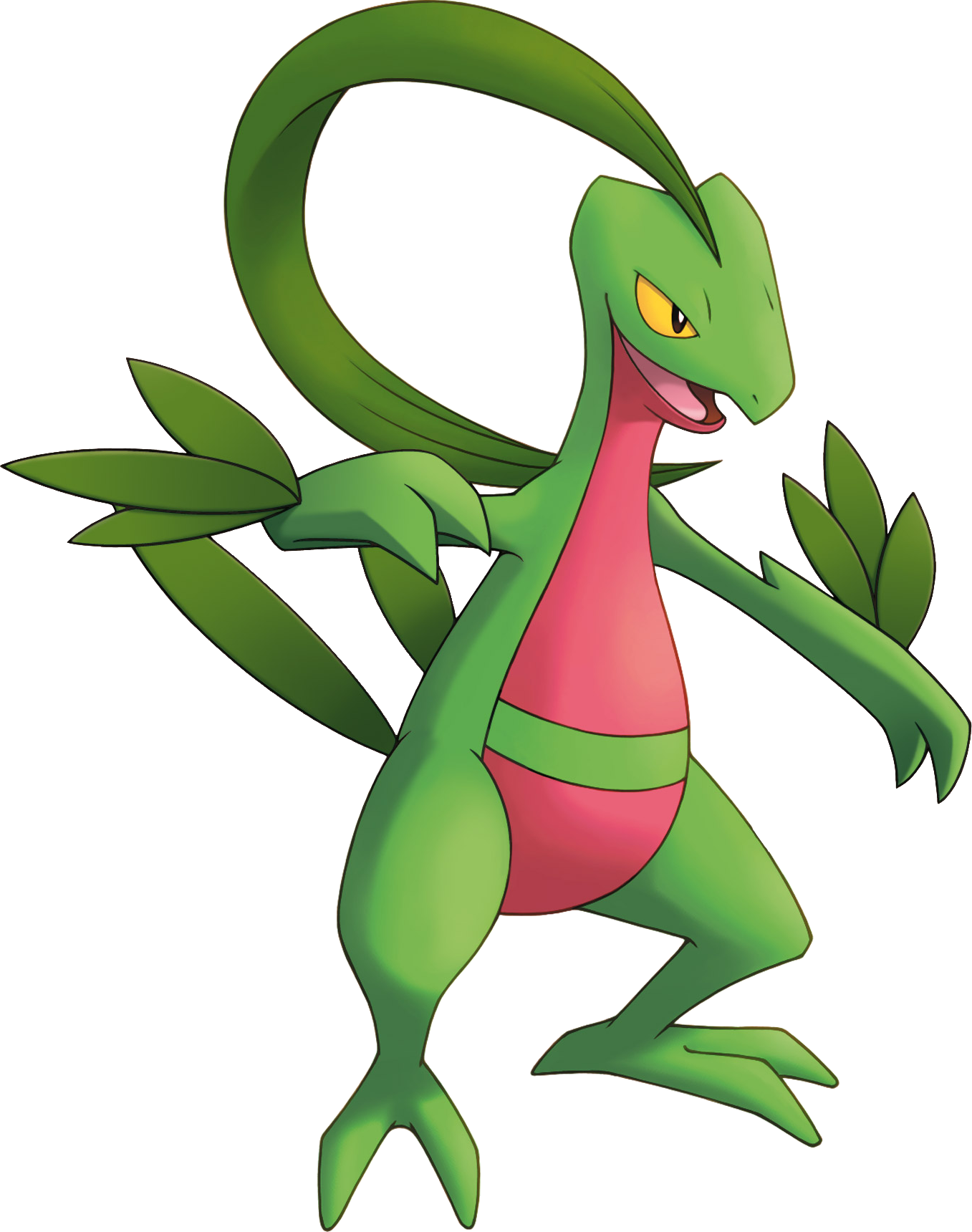 Grovyle Mystery Dungeon Pokemon Wiki Fandom