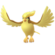 Pidgeot GO Shiny