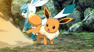 Virgil Eevee Sand-Attack