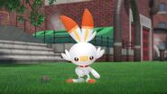 Pokemon Sword & Shield Scorbunny in Game