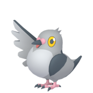519Pidove Pokémon HOME